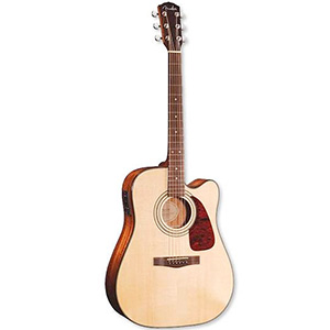 Fender DG-20SCE Natural []