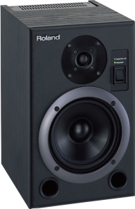 Roland DS5 Single Active Monitor * 1-Available