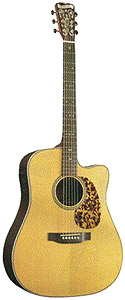 Blueridge BR-160CE with Golden Gate Case [BR160CE]