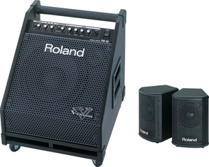 Roland PM-30