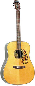Blueridge BR-160 With Golden Gate Hard Case  [BR-160]