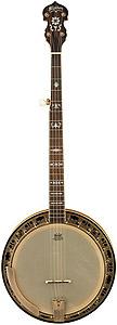 B120 Pro Banjo with Case