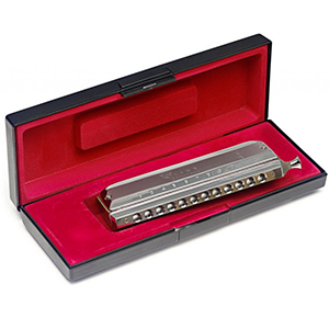 Stagg BJH-C48 12 Hole Chromatic Harmonica