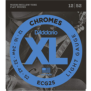 Daddario ECG25 - Chrome Regular Light