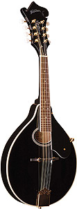 Washburn M1SDL - Black