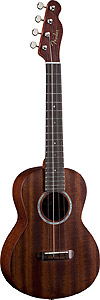 Fender Ukulele Paina
