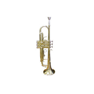 Palatino Bb Trumpet Outfit WI-PBW-015TP