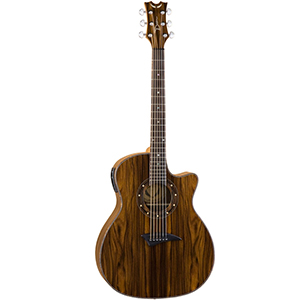 Exotica Cocobolo Acoustic Electric Guitar
