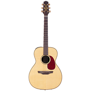 Takamine TAN76 Super Natural