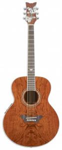Daisy Rock Butterfly Jumbo Acoustic-Electric - Bubinga [6280]