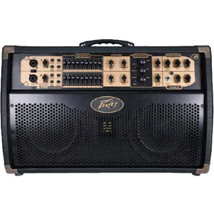 Peavey Ecoustic Session 300