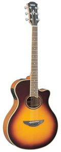 APX700II - Brown Sunburst