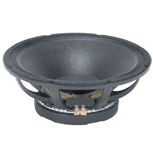 Peavey 15-Inch Pro Rider Subwoofer