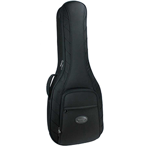 Reunion Blues RBA2 Dreadnought Guitar Case - Black