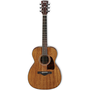 Ibanez Artwood AC240OPN Open Pore Natural