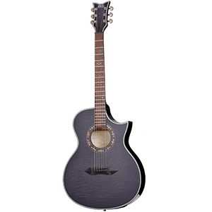 Schecter Hellraiser Stage Acoustic See-Thru Black [366]