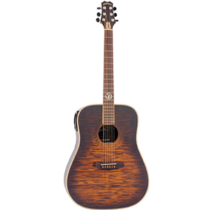 Peavey JD-AG3 Jack Daniels Acoustic [00592700]