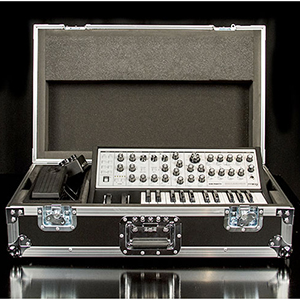 Sub Phatty ATA Road Case