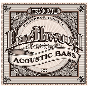 Ernie Ball 2070 Earthwood Phosphor Bronze