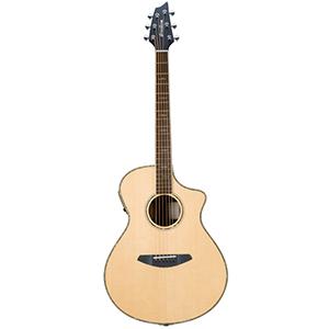 Breedlove Stage Concert Guitar [STAGE CONCERT]