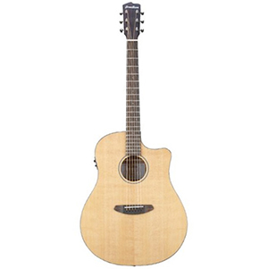 Breedlove Discovery Dreadnought CE Guitar