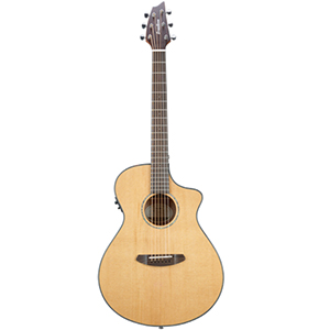 Breedlove Pursuit Concert [PURSUIT CONCERT]