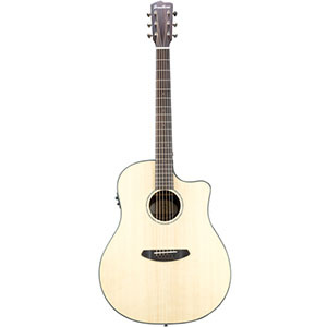 Breedlove Pursuit Dreadnought Ebony [PURSUIT DREADNOUGHT EBONY]