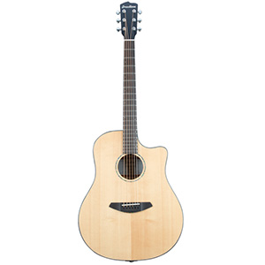 Breedlove Solo Dreadnought