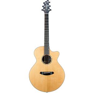 Premier Auditorium Rosewood Guitar