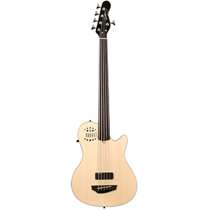 Godin A5 Ultra Fretless Synth Access Bass