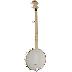 Washburn B102 Banjo