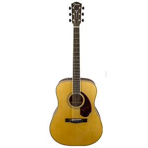 Fender PM-1 Standard Natural
