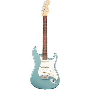 Fender American Professional Stratocaster - Sonic Gray
