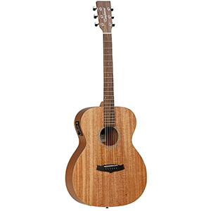 Tanglewood TW2 AS E Winterleaf