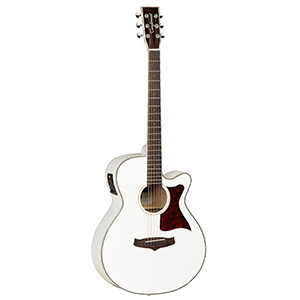 Tanglewood TW4 WH
