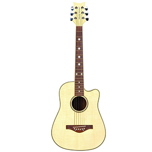 Daisy Rock Wildwood Acoustic - Beach Blonde