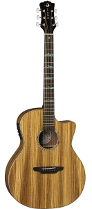 Luna Guitars High Tide Grand Concert Zebrawood