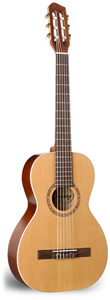 Art Lutherie AMI Nylon - Cedar Top w/ Deluxe Gig bag [023257]