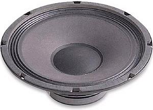 Alpha Series 10A Inch  8 Ohms