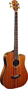 Fender Victor Bailey Signature Acoustic-Electric Bass [0953300221]