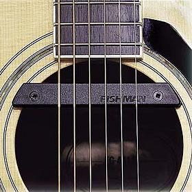 Fishman Rare Earth Single Coil Soundhole Pickup