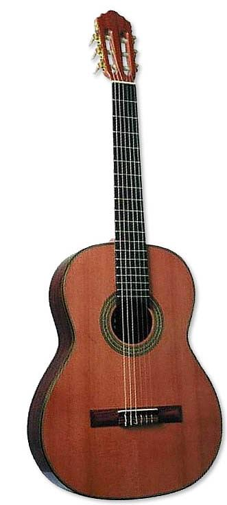 Giannini Giannini Sevilha Classical Guitar GWNC1 with Gig Bag