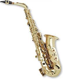 Hazelton Hazelton E Flat Alto Saxophone with Case