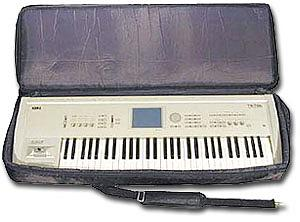Korg 61 Key Triton Soft Case