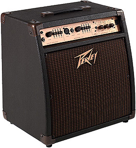 Peavey Ecoustic 110 EFX *Demo