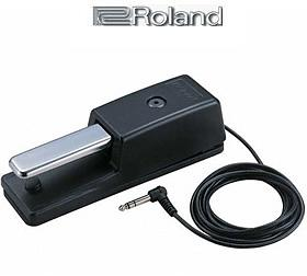 Roland DP-10